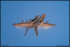 F-18 Hornet Low High Low by AirshowDave