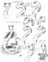 Kaa model sheet by Tiquitoc