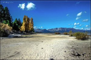 Regan Beach, South Lake Tahoe, CA by lil-Mickey