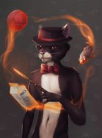 Wizard cat by valravnclaw