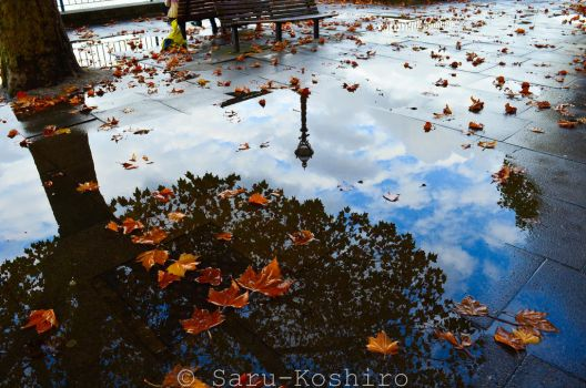 Autumn in London by Saru-Koshiro