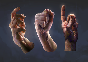 Hand Studies by JoshSummana