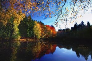 Herbsttage 1 by AStoKo