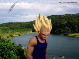 papiel Vegeta de Dragon Ball by curi222