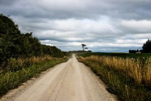 Stock2 Road-50 by lomatic