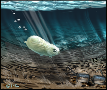 Podge under water by Reptangle