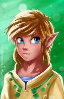Link The Hero of Time by LenLenbell