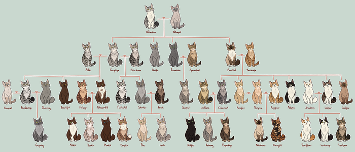 White And Willow Family Tree by AnnMY