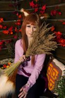 Horo with wheat by KyrieMayCry