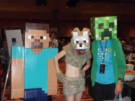 Steve, Wolfgirl, and Creeper by CharmandersFlame
