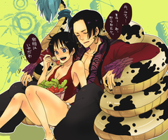Luffy and Boa by LovleyGraphic