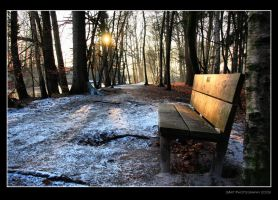 Lonely Bench by Stevie73