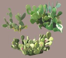 Cactus by AlbinoPearl