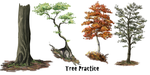 Tree practice and vid tut by DawnFrost