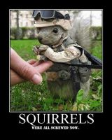 Squirrels by Tanin34