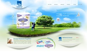 Europap Website Concept by grafiket