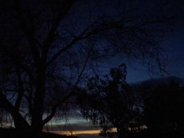Back yard at twilight by ANewChallenger
