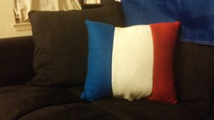 French Flag Pillow by Annelixa