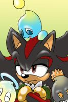 Shadow with Chao by EvanStanley