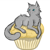 Muffin Cat by Noxe-ApplePi