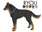 Ryou's character reference by Twister4eva