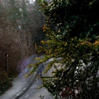 Ghosts: :colour by Ilharess
