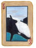 King of Hearts: The Orca by KefiraDalila