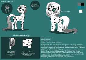 Dream finder - Reference sheet by hoshi-kou