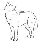 + Howling Wolf Lineart + by LimskArt