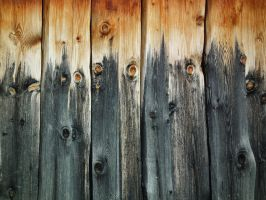 Wood - Light To Dark by Limited-Vision-Stock