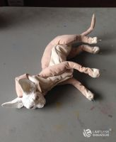 Last Sphynx FOR SALE WIP by LimitlessEndeavours
