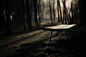 The bench by mila2boo