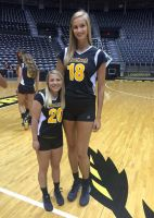 Tall Volleyball player compare (WSU) by lowerrider
