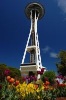 Garden of the Needle by Bspacewiz2