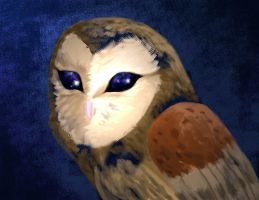 Owl Of Pure Awesome by varletlegion