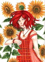 Sunflower by MoMoRiddle