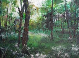 Forest by alhopwood