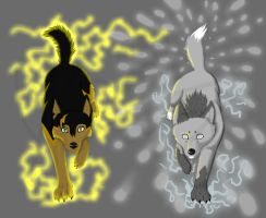 Thunder storm and Blizzard by JBpaw