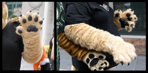 Lioness Handpaws by CuriousCreatures