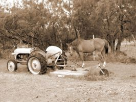 Horse and a Tractor by siannajmj