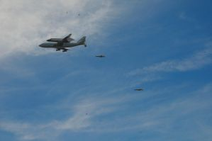 Shuttle Endeavor, T-38's, and Birds by AndySerrano
