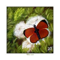 Scarce copper Painting by Clu-art