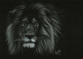Portrait of a Lion by Shinigami1289