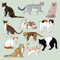 Adoptables Cats by moonlite-adopts