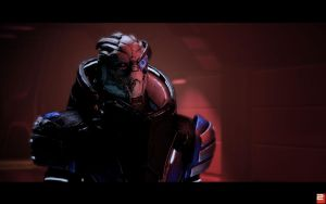 Mass Effect 2: Garrus by Maddithong