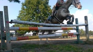 3ft oxer by MeganSambuca