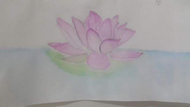 Another lotus flower by CasualScribbles