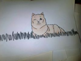 Finnish Spitz by TayTheReaper