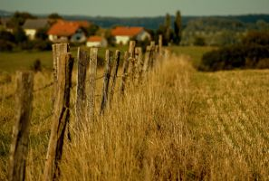 Houses in the country by LiveInPix