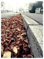rusted leaves by D-u-D